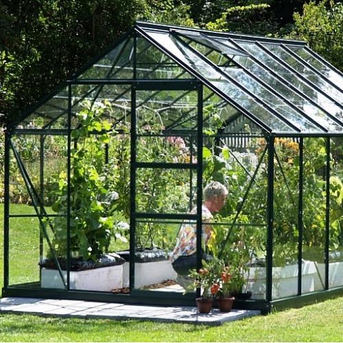 Vitavia Neptune 9900 8x12 Green Greenhouse Greenhouse